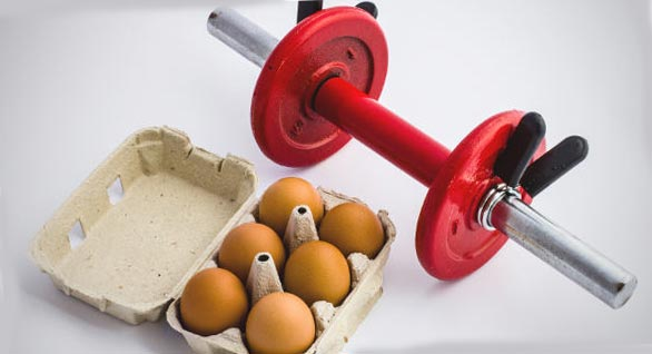 Освен това, белтъчините са градивните елементи на мускулите и те изпълняват още около дузина важни функции в организма.