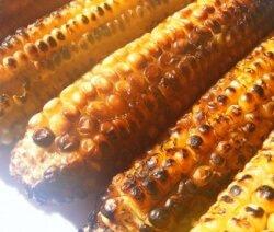 царевица на скара