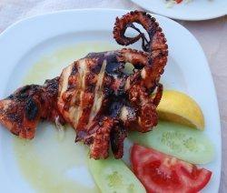 октопод на скара